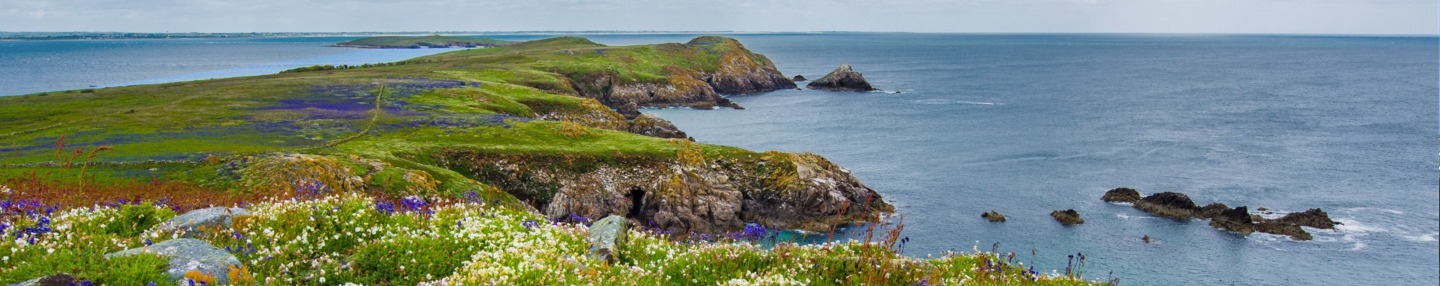Headland in spring